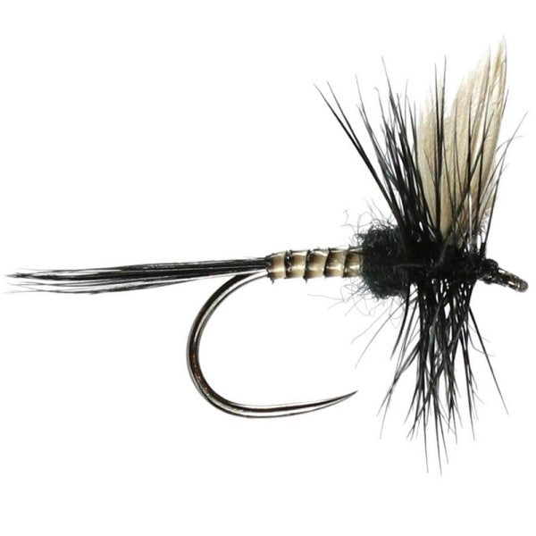 Black Gnat Dry Fly (W) Flies