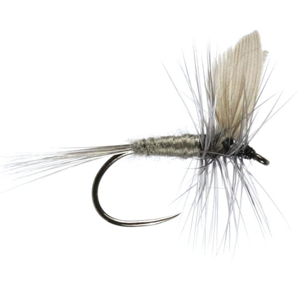 Blue Dun Winged Dry Flies