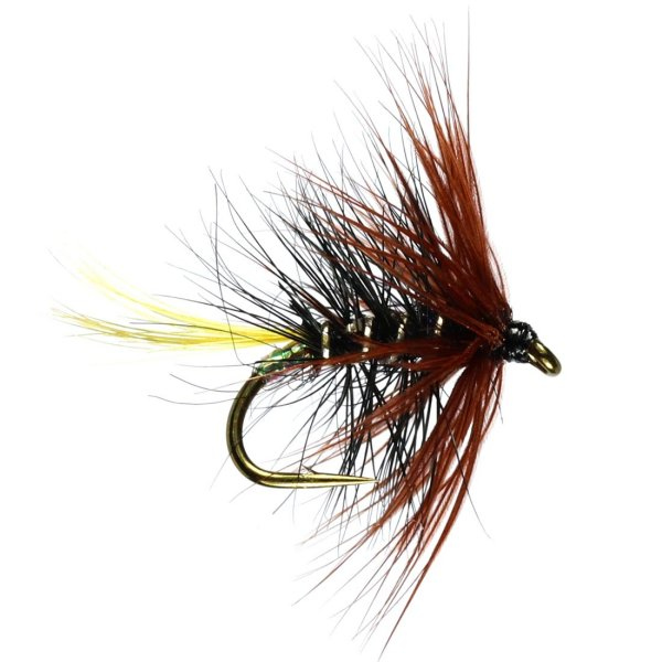 John Norris Pro Team Fly Selection Service for Trout
