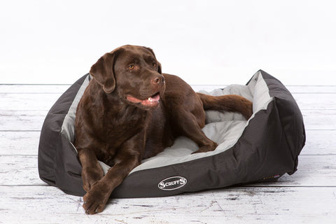 Scruffs Expedition Water Resistant Box Dog Bed