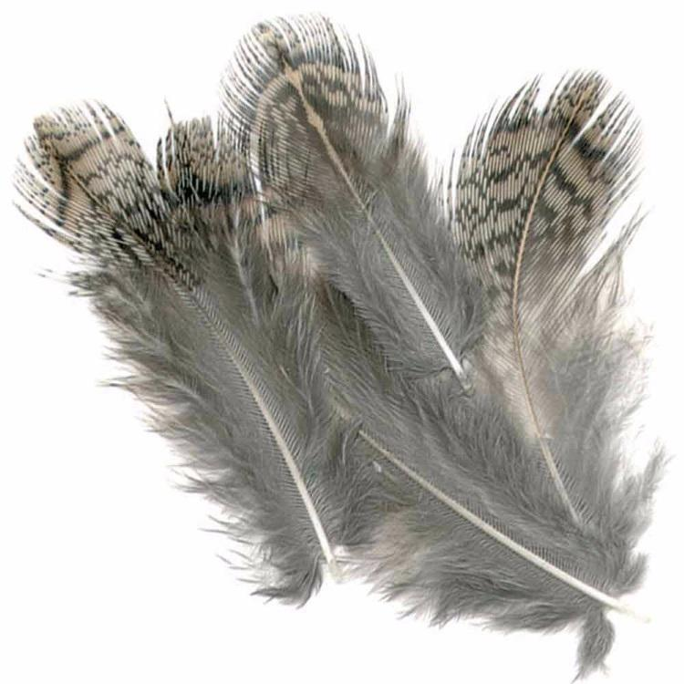 Brown Partridge Back Hackles