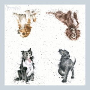 Wrendale Designs Walkies Lunch Napkins