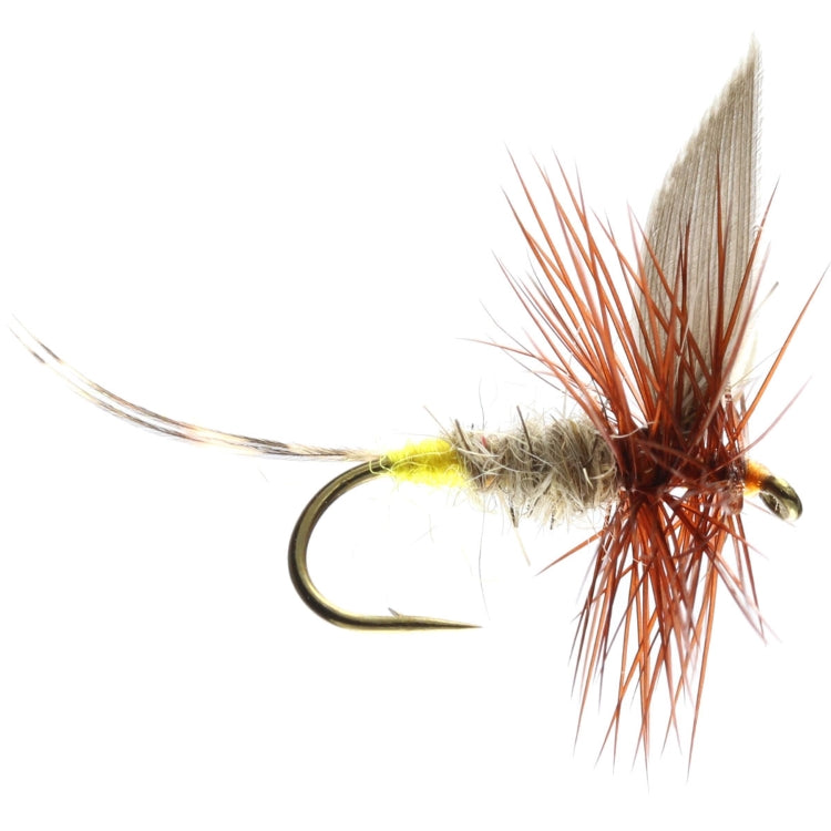 Hares Ear Winged Dry Flies