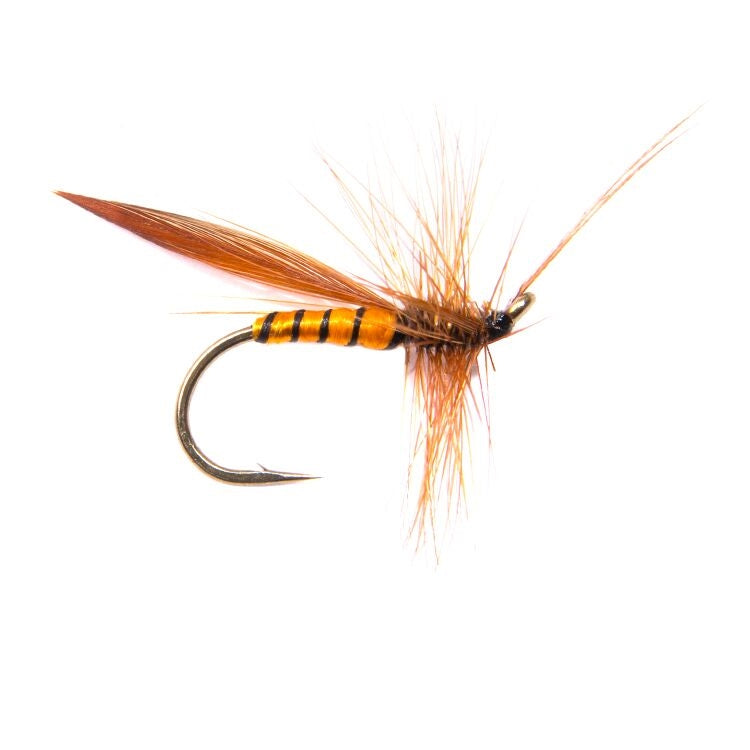 Cinnamon Sedge Flies