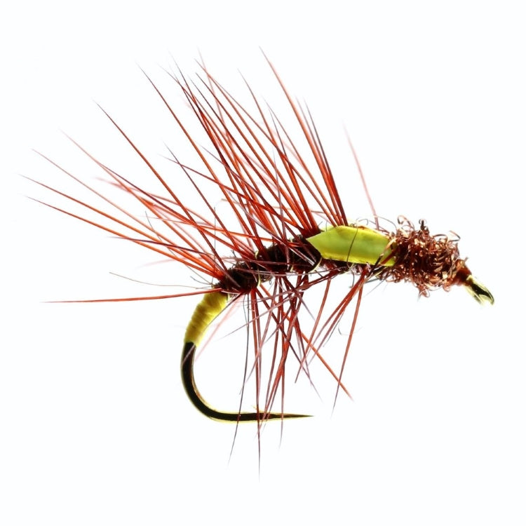 Fiery Brown Snatcher Flies