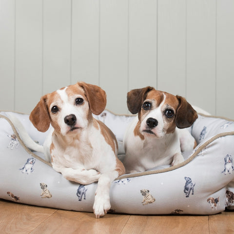 Wrendale Designs Medium Dog Bed