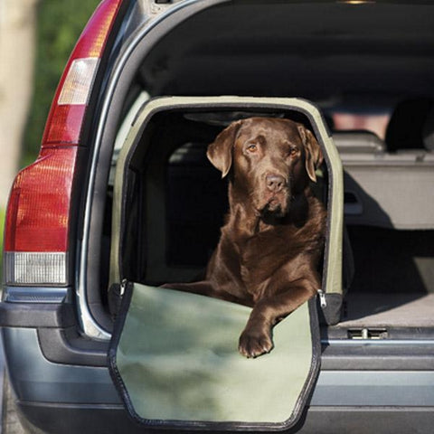 Seeland Dog Transporter Box - Labrador