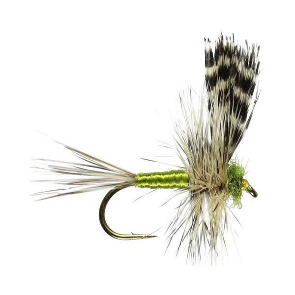 Adams Thorax Barbed Winged Dry Flies