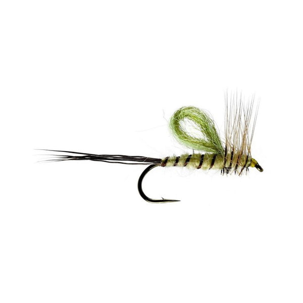 Aerowing Mayfly Emerger Flies