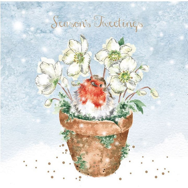 Wrendale Designs Christmas Boxed Cards - Seasons Tweetings Set of 8