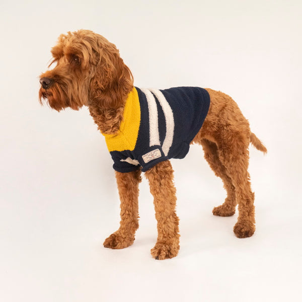 Joules Coastal Dog Jumper