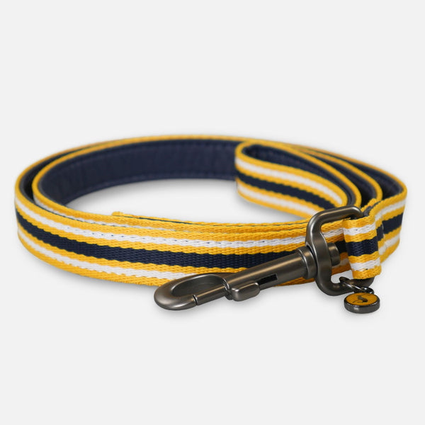 Joules Coastal Dog Lead - Yellow Stripe