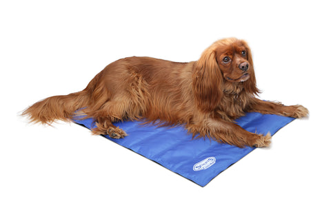 Scruffs Dog Cool Mat