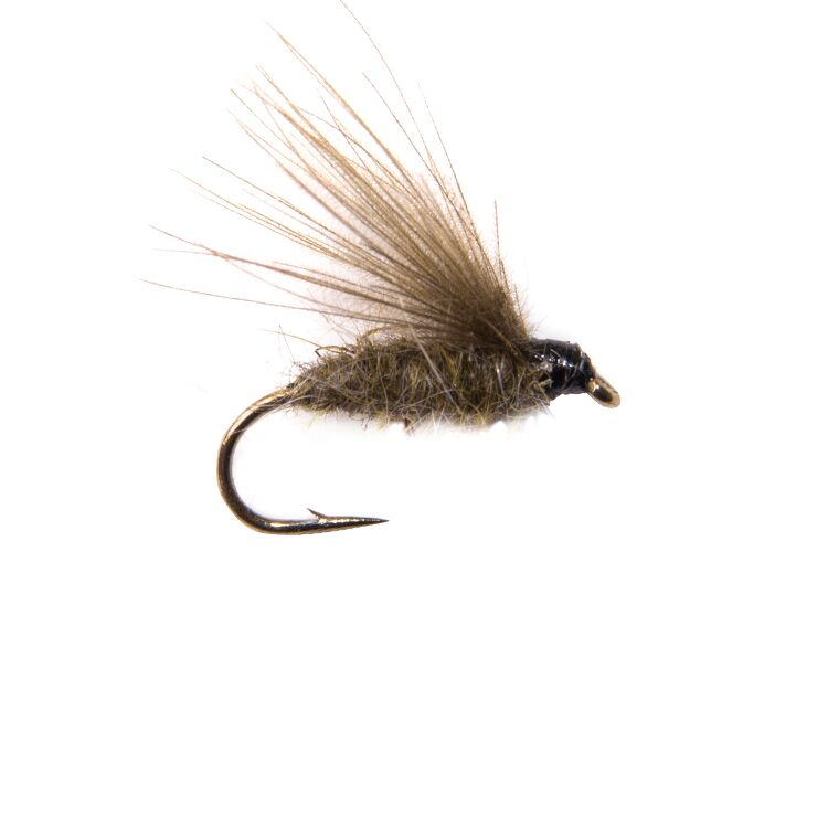 CDC F Fly Olive Flies