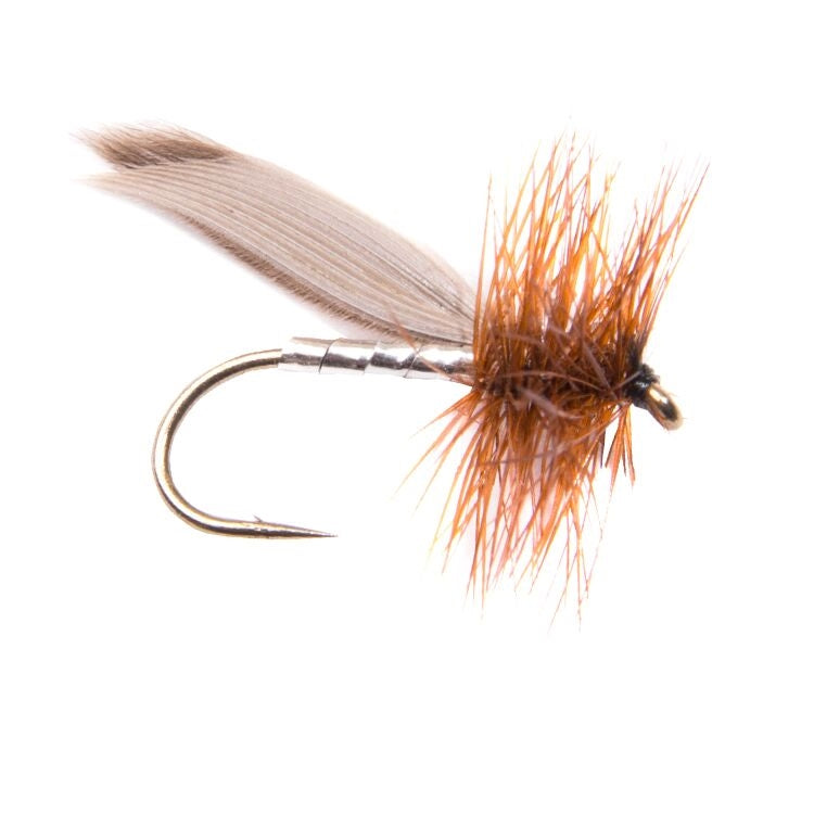 Silver Sedge Flies