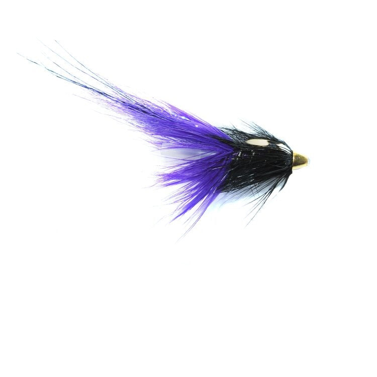 Purple PBP Flies