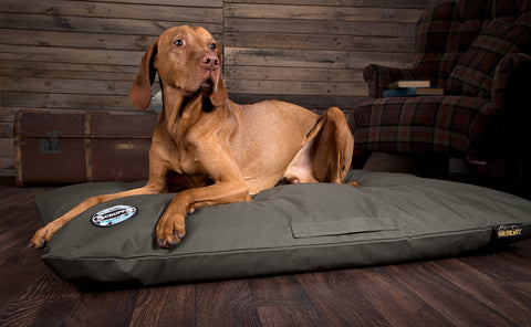 Scruffs Expedition Orthopaedic Pillow Dog Bed