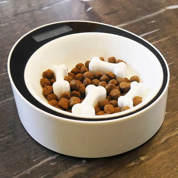 Rosewood Smart Slow Dog Feeder