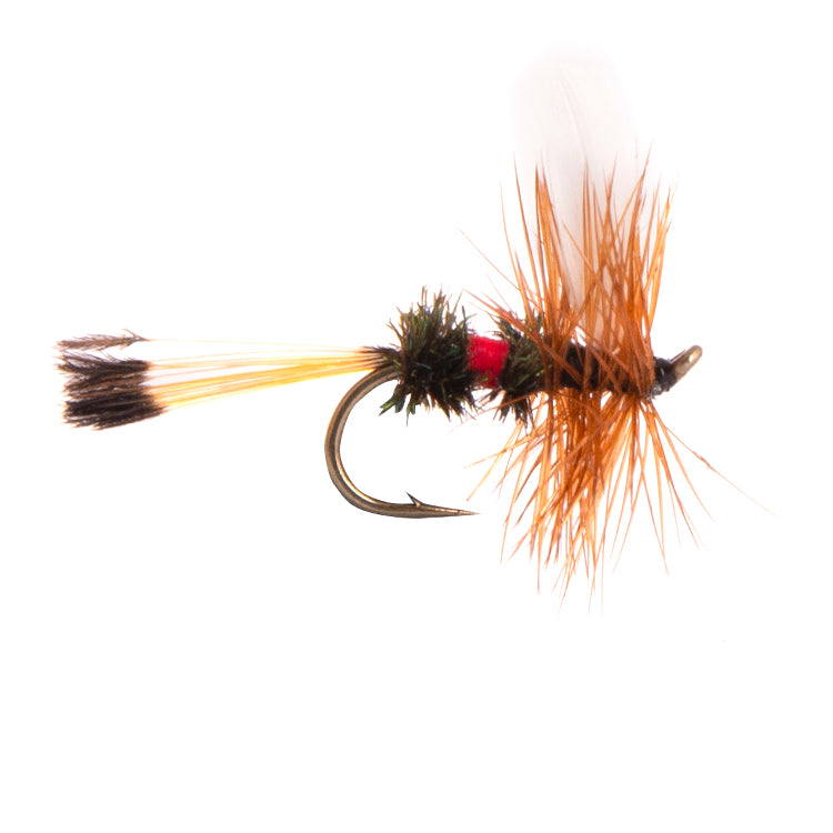 Royal Coachman Winged Dry Flies