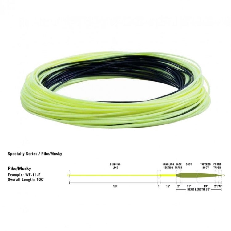 Rio In Touch Pike/Musky Fly Lines - Intermediate/Sink 6