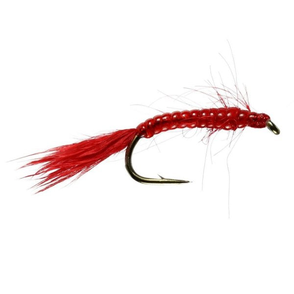 Bloodworm Nymph