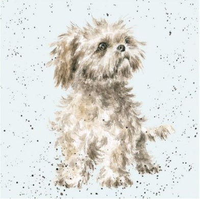 Wrendale Designs Shih Tzu Card