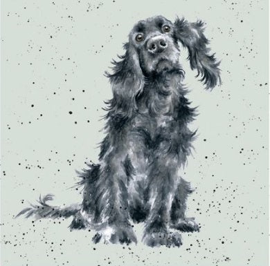 Wrendale Designs Black Cocker Spaniel Card