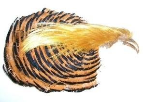 Golden Pheasant Complete Head Crest and Collar