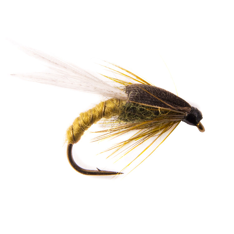 Light Olive Adult Buzzer