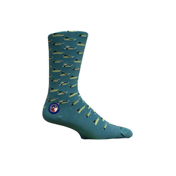 Currituck Teal Socks