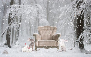 Digital backdrop magic winter background