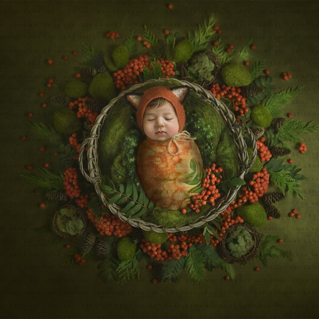 PNG Digital backdrop baby boy or girl  forest wreath (transparent face)