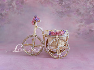 Digital backdrop Basket bike