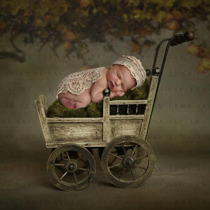 Digital backdrop vintage stroller