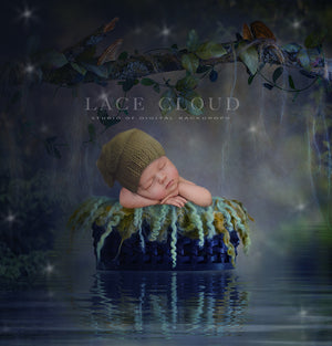 Newborn Digital backdrop Fairy tail forest river