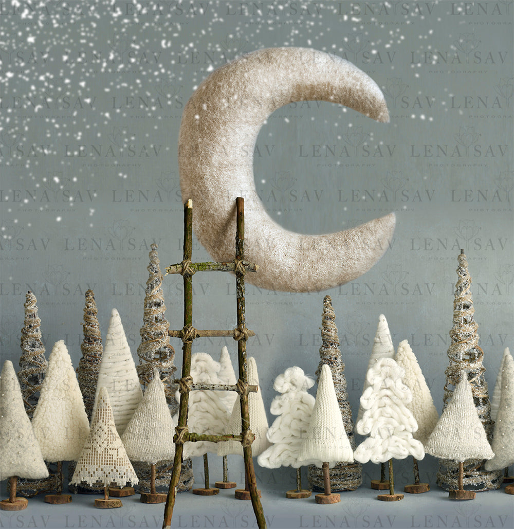 Winter Moon Digital backdrop