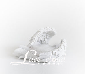 Digital backdrop White Angel wings