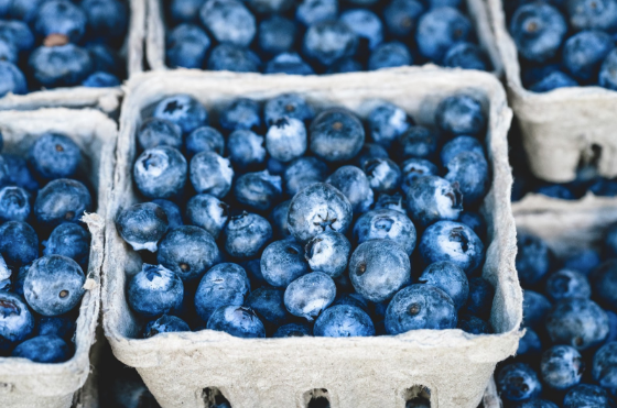 blueberries_wellness