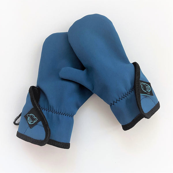 Blue best toddler mittens