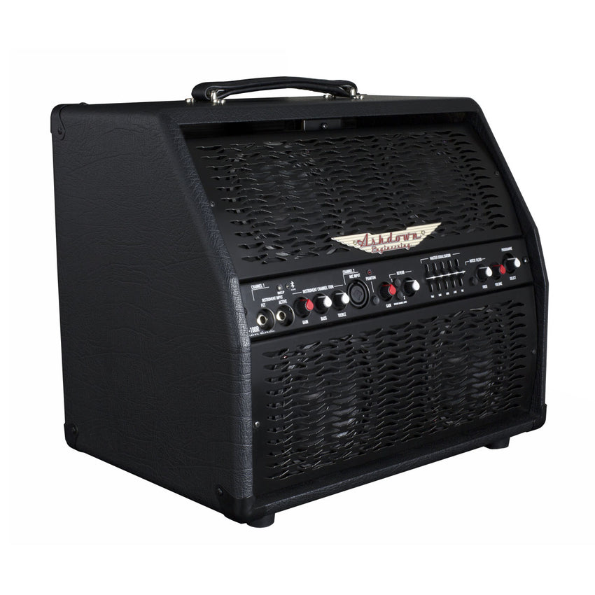 AA-100-R Professional Acoustic Combo