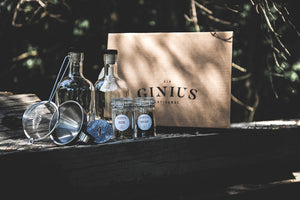 Kit à gin Ginius