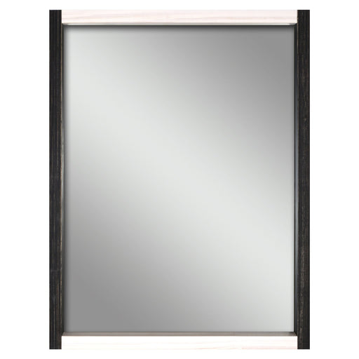 "16""X20"" Two-Toned Wall Mirror"
