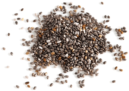 Holos Ingredients - Chia Seeds