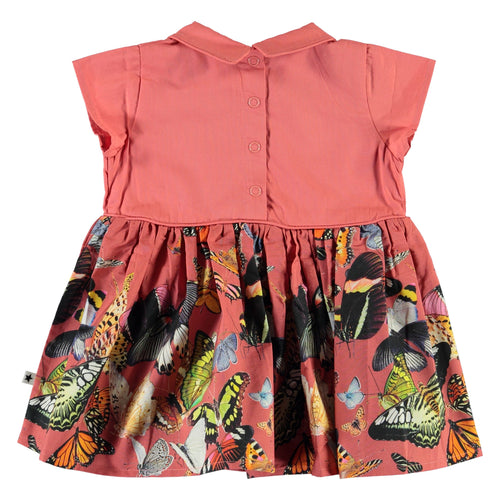 Molo butterfly print baby girl dress