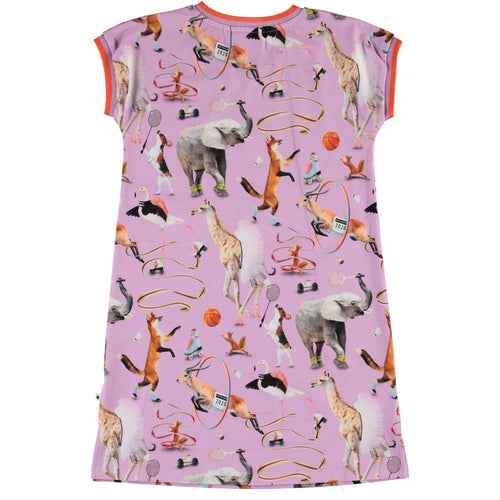 Molo purple animal short sleeve dress for girls