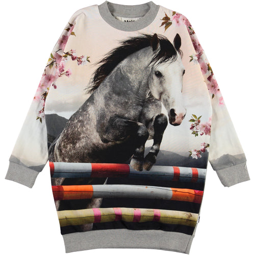 Molo jumping horse long sleeve knit girls dress