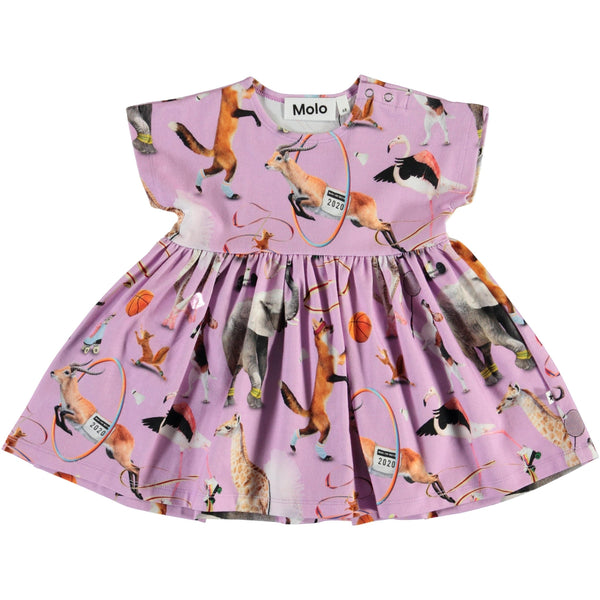 Molo purple animal short sleeve baby girl dress