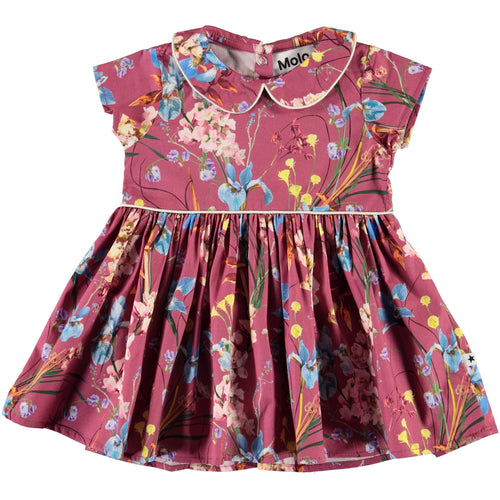 Molo pink floral baby girl dress with collar