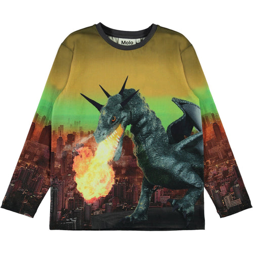 Molo colorful long sleeve dragon boys t shirt