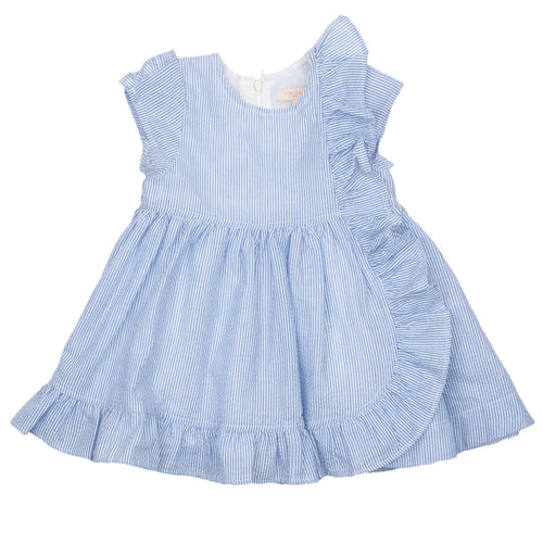 Pink chicken blue seersucker short sleeve girls dress